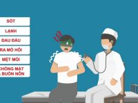 triệu chứng sốt xuất huyết ở người lớn