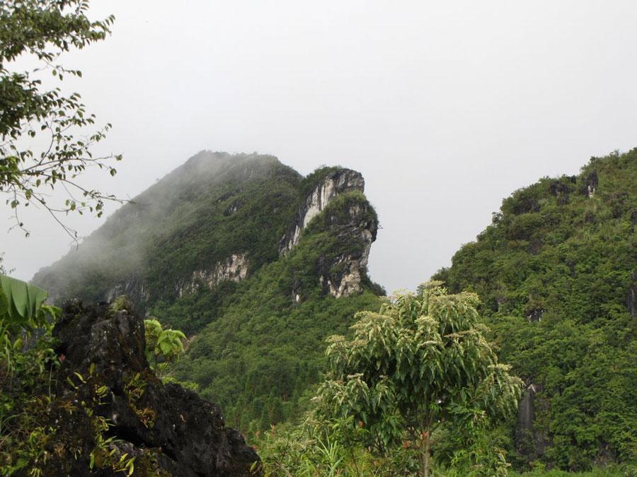 du lịch sinh thái là gì